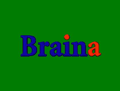 Braina Reviews