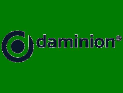 Daminion Review