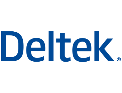 Deltek Vision Reviews